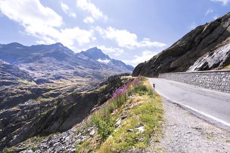 gavia: Mountain road to Gavia Pass, Lombardy Italy.