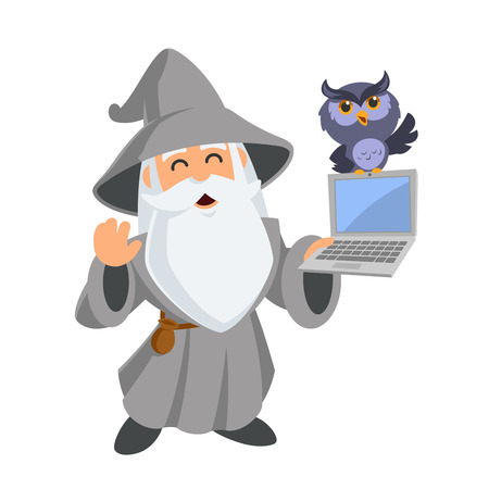 Friendly wizard, he has a laptop, vector illustration.