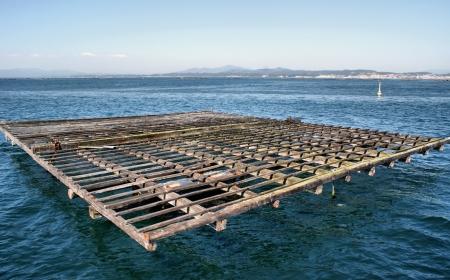 goteros: Balsa cultivo de mejillones de la Ría de Pontevedra, Galicia, España Foto de archivo