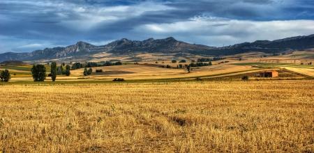 Castilla La Mancha landscape, Spain