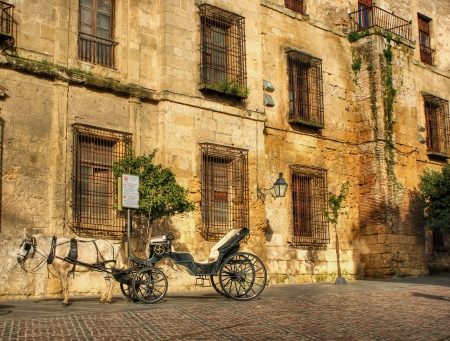 Traditional horse and cart at Cordoba in Spain Stock Photo - 19018204