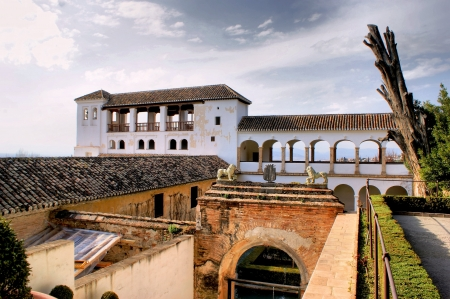Alhambra Palace   Gardens in Grenade, Spain Stock Photo - 19651865