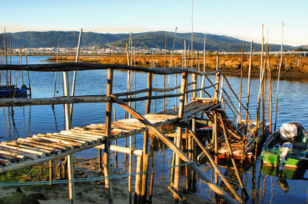 Traditional wooden pier stilts in Lima river, Portugal