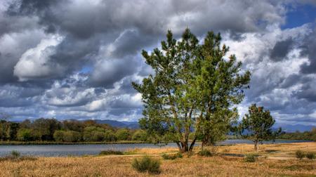 Landscape near Lima river in Viana do Castelo Stock Photo - 43625116