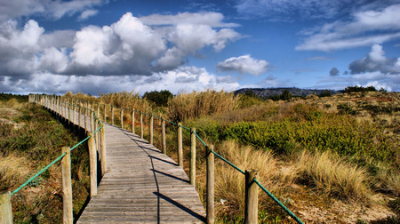 Paths on the beach in Portugal Stock Photo - 43625121