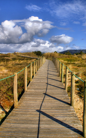 Paths on the beach in Portugal Stock Photo - 43625124