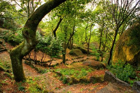 guimaraes: Penha park in Guimaraes, north of Portugal.
