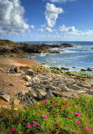 Rock beach in Vila Praia de Ancora, north of Portugal Stock Photo - 49584786
