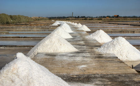 Salt pans on a saline exploration, Figueira da Foz, Portugal Banco de Imagens