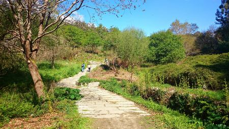 Portuguese Way of Santiago near Pontevedra, Spain
