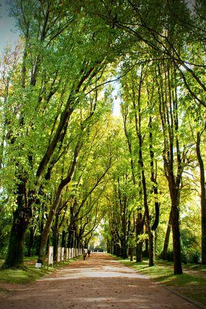 Serralves park in Oporto, Portugal Banco de Imagens - 122108713