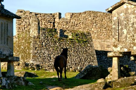 Horse near Lindoso granaries in National Park of Peneda Geres, Portugal Banco de Imagens