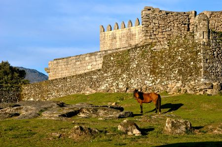 Horse near Lindoso castle in National Park of Peneda Geres, Portugal Banco de Imagens