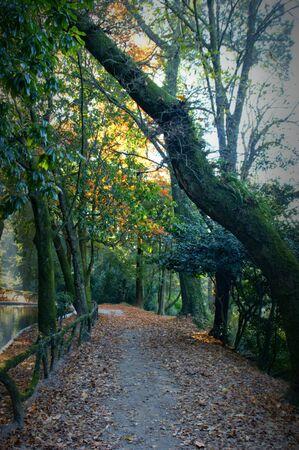 Park of Bom Jesus in Braga (Portugal) World Heritage Banco de Imagens - 128074761
