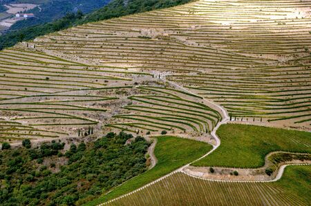 Douro Valley, vineyards and landscape near Regua, Portugal Stock Photo