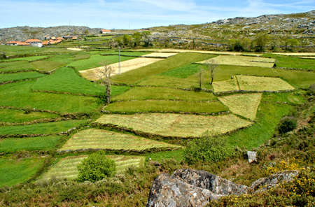 Fields at Serra da Freita in Arouca, Portugal Banco de Imagens