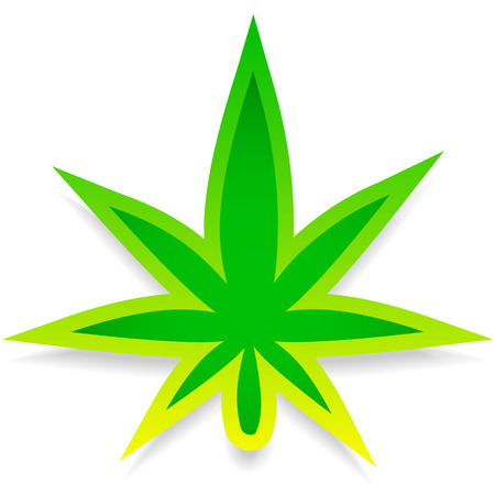 tetrahydrocannabinol: Leaf of cannabis or weed on white. Editable