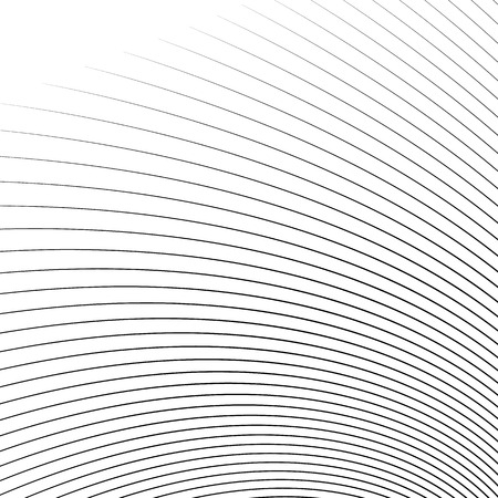 camber: Thin dynamic curved lines monochrome geometric pattern
