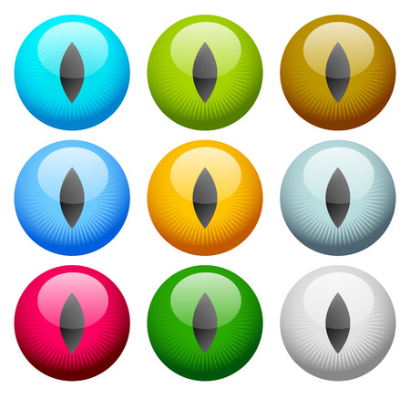 Colorful eye - eyeball icon(s) - Vision, aesthetics concept icon