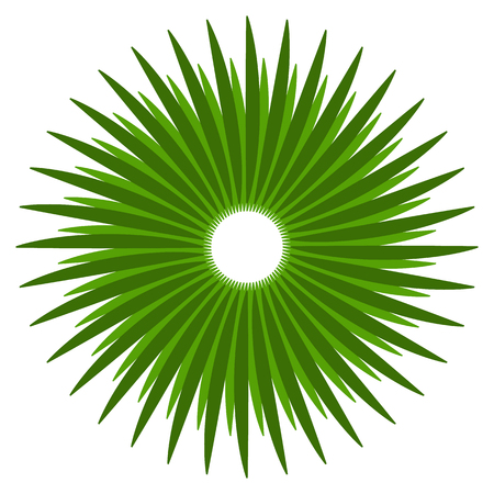 Abstract shape with circular lines for nature concepts. Radial lines design element. Illustration