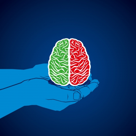 brain in hand with two color vector Vector