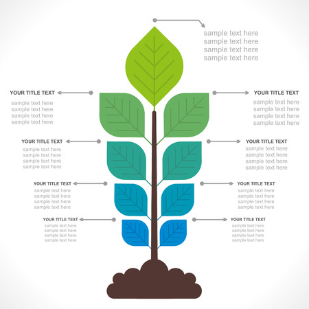 growth chart: tree creative info-graphics concept vector Illustration