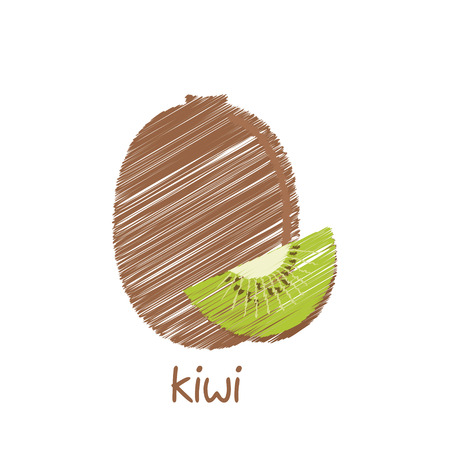 kiwi fruit: kiwi, dise�o dibujo vectorial Vectores