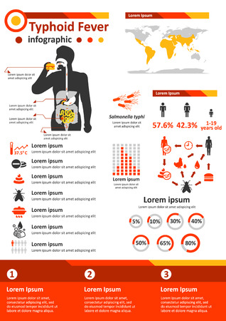 Simple flat style infographics components for health education poster about typhoid fever.