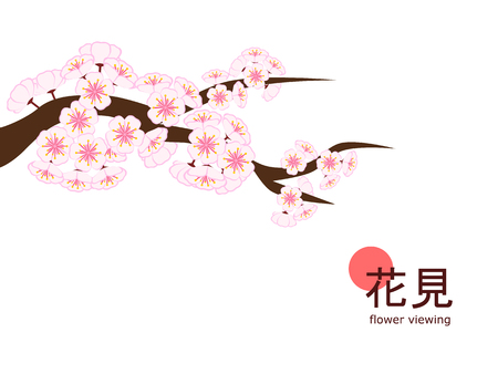 Cherry blossom branch in flat style on 4 : 3 white background, made to celebrate 2018 Hanami (Japanese flower viewing) tradition. Çizim