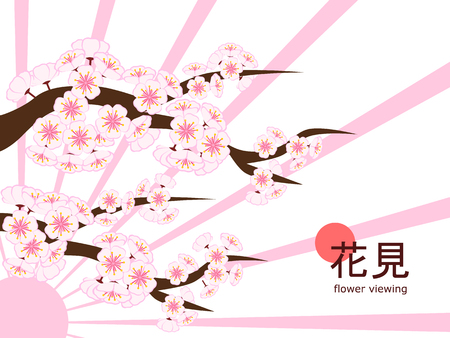 Large cherry blossom branch in flat style white background with sunshine-like pink ray, made to celebrate 2018 Hanami (Japanese flower viewing) tradition.