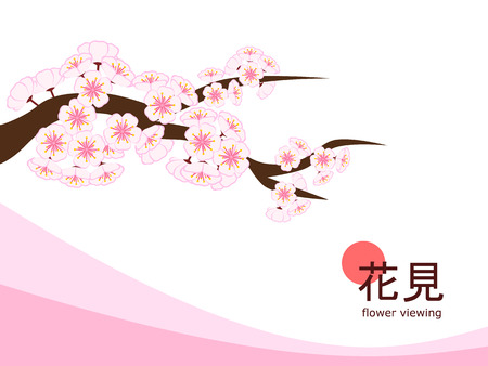 Cherry blossom branch in flat style on 4 : 3 white background with pink accent, made to celebrate 2018 Hanami (Japanese flower viewing) tradition.