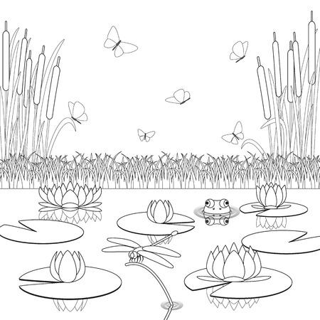 Kleurplaat met vijver inwoners en planten. Vector illustratie.