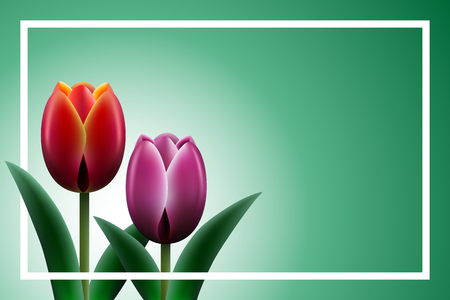 Floral background with tulips. Stock Illustratie