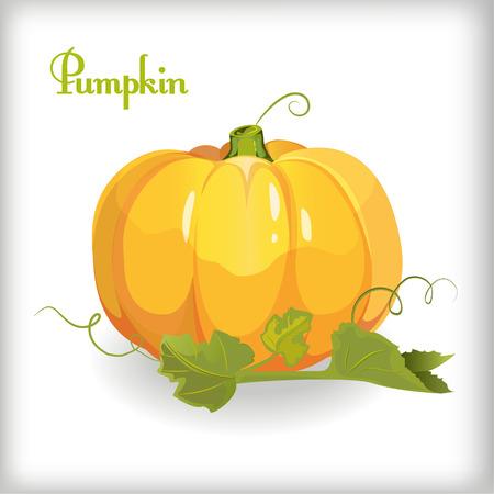 Illustration of Autumn Pumpkin and leaves in cartoon style Illustration