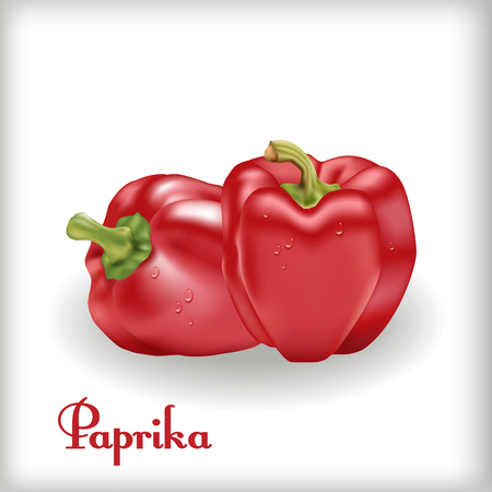Red Sweet Bulgarian Bell Pepper Ilustrace