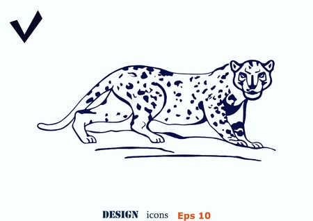 offensive: Vector illustration of an evil, wild, aggressive leopard. Prey, cheetah dangerous. Offensive cougar. Panther.