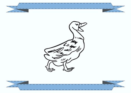 poultry: Duck icon. Poultry icon. Vector illustration. Illustration