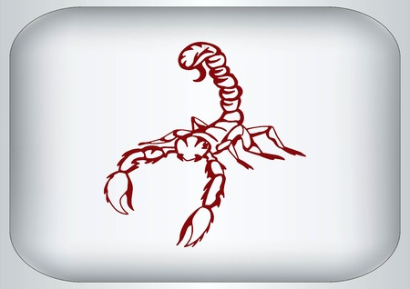predatory: Vector illustration of an evil, savage, aggressive scorpion. Predatory, dangerous beast. Angry poisonous spider.