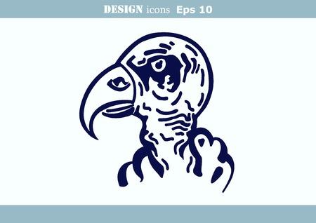 predatory: illustration of the evil head, ferocious, aggressive vulture. Predatory, dangerous beast. Angry Eagle.
