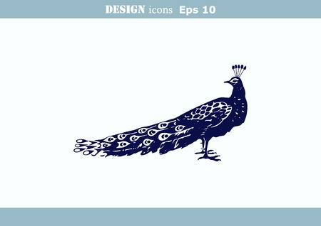 barn swallow: Bird icon. Peacock illustration. Illustration