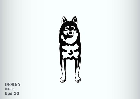 Vector illustration of a dog. Aggressive purebred dog. Illustration