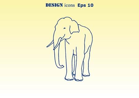 dangerous: Vector illustration of an elephants head. Large, dangerous beast.