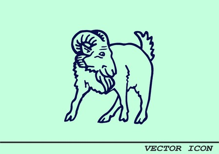 Vector illustration of a goat. Mountain argali.
