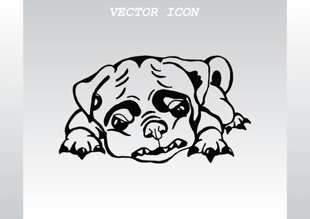 whelp: Vector illustration of a puppy. A small dog.