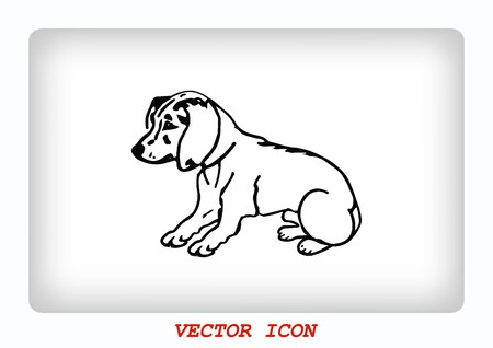 whelps: Vector illustration of a puppy. A small dog.