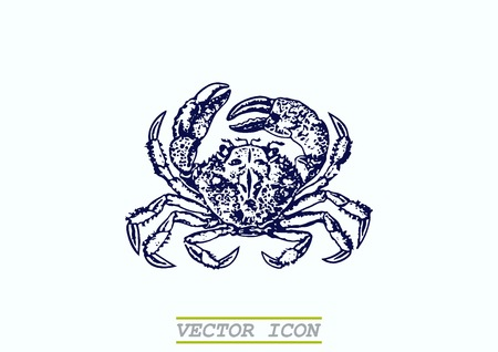crustacea: Vector illustration of a crab. Logo, graphics, seafood. Marine reptile.