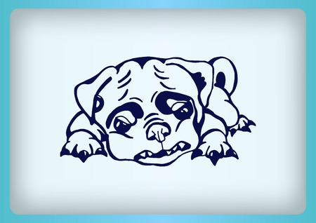 purebred: Vector illustration of a puppy. A small dog.
