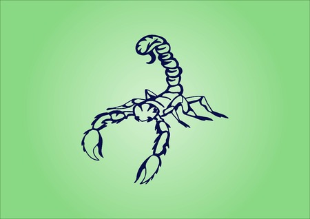 savage: Vector illustration of an evil, savage, aggressive scorpion. Predatory, dangerous beast. Angry poisonous spider.