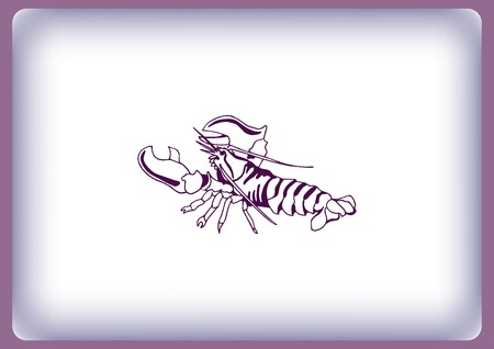 Lobster, cancer icon. Vector illustration.  graphics, seafood. Marine reptile.