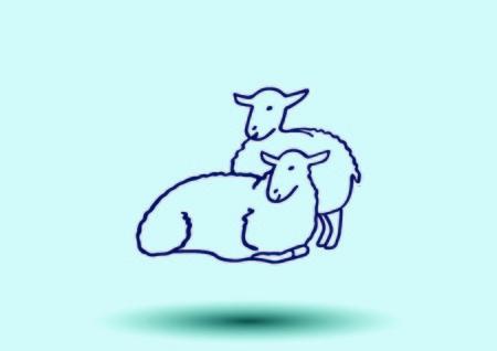 Vector illustration of sheep.